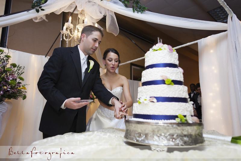 Beaumont-Wedding-Reception-2010-580