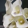 Nederland-Wedding-2010-062