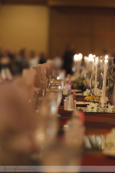 Beaumont-Wedding-Reception-2010-473