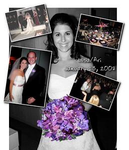 Lisa/Ari Wedding from Karen