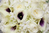 04 25 09 Liz & John's Wedding-7241