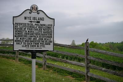 Lynn Carl PreWedding Wye Island, MD