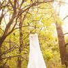 Minooka Wedding Photography McKinley Woods-4