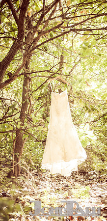 Minooka Wedding Photography McKinley Woods-1