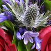A few floral close-ups