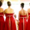 Brides maids Dresses back detail