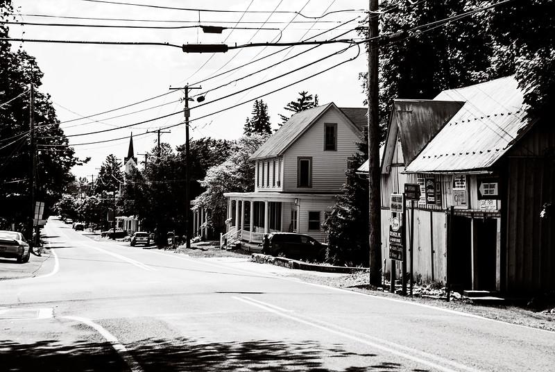 (c) L. Cullum - savETheduck photography