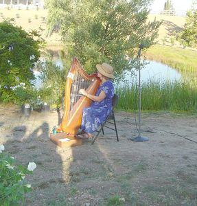 Maya and Brian's Wedding-Harpist