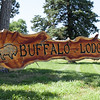 Scardino-BuffaloLodge-Wedding-002