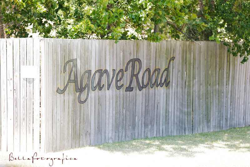 agave road wedding details