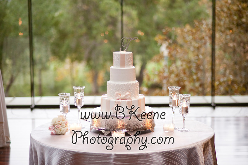 Reception_TomMegan_BKeenePhotography_031