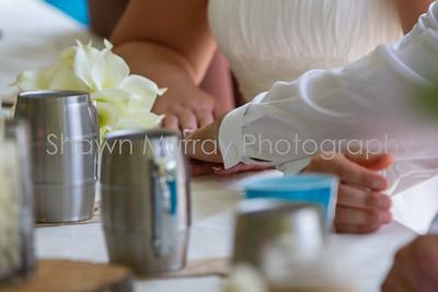 0020_Reception_Melanie-Dan-Wedding_071115
