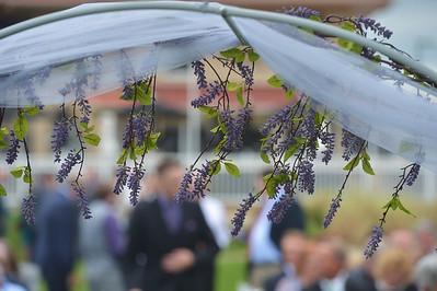 bartoszek wedding3891
