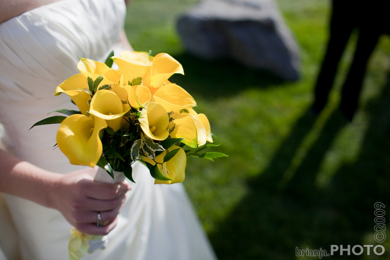 IMG_4314A