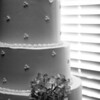 Meredith-Mike_wed_085