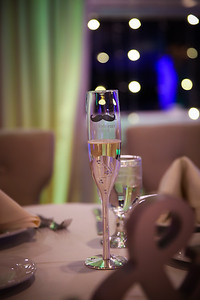 Mike&Jess_Wedding_Reception-819