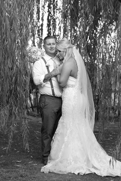 Sharp_Wedding_1426_2015