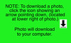 How to Download ONE photo Info