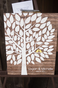 Michelle and Logan-2949