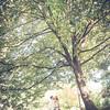 Rockford_Wedding_Photos-Liszka-526