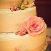 Rockford_Wedding_Photos-Liszka-621
