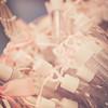 Rockford_Wedding_Photos-Liszka-105