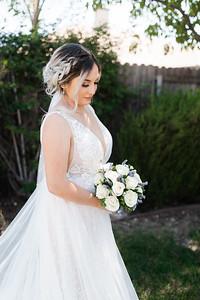 Alexandria Vail Photography Windmill Vinyards Wedding M O 294