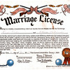 Phoney Marriage License