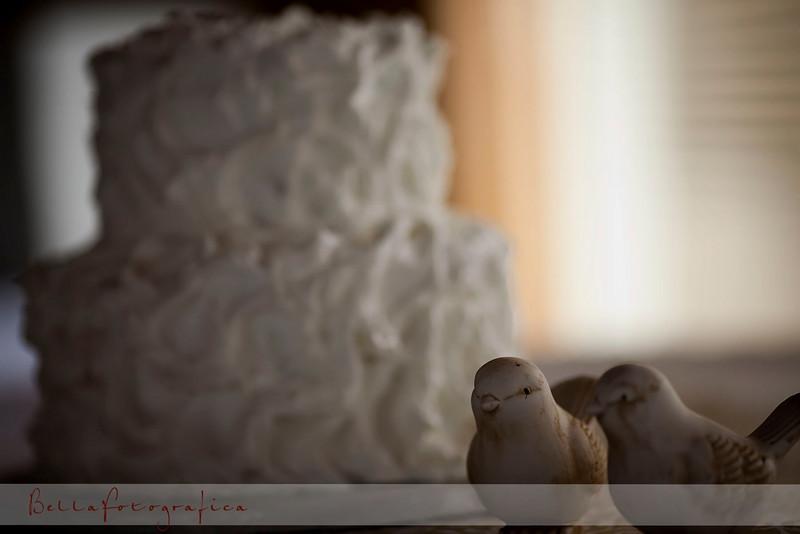 Mona-Wedding-03272010-006