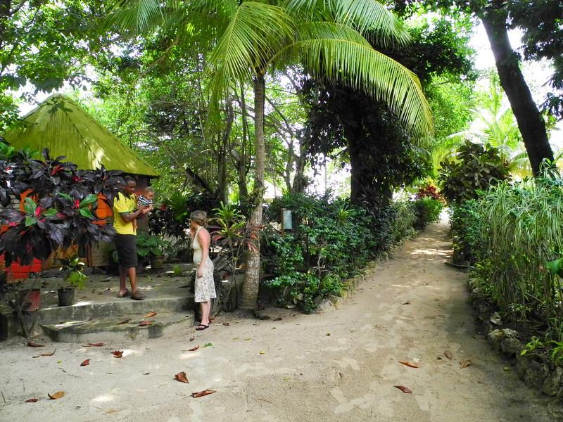 Jamaica 2012-122