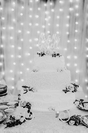 03452--©ADHPhotography2018--MorganBurrellJennaEdwards--Wedding--2018April21