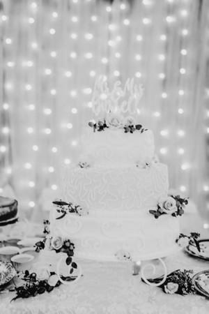 03454--©ADHPhotography2018--MorganBurrellJennaEdwards--Wedding--2018April21