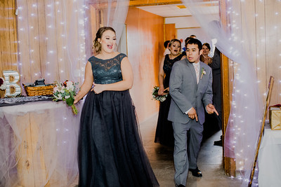 03773--©ADHPhotography2018--MorganBurrellJennaEdwards--Wedding--2018April21