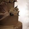 Morgin_Wedding_20090801_0656