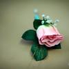 Morgin_Wedding_20090801_0166