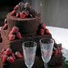 Morgin_Wedding_20090801_0654