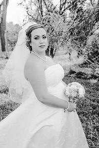 01160--©ADHPhotography2017--ClintBeguinShelbyCook--Wedding