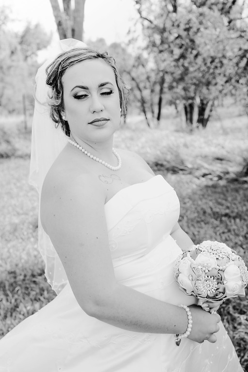 01166--©ADHPhotography2017--ClintBeguinShelbyCook--Wedding