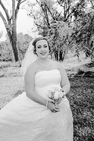 01156--©ADHPhotography2017--ClintBeguinShelbyCook--Wedding