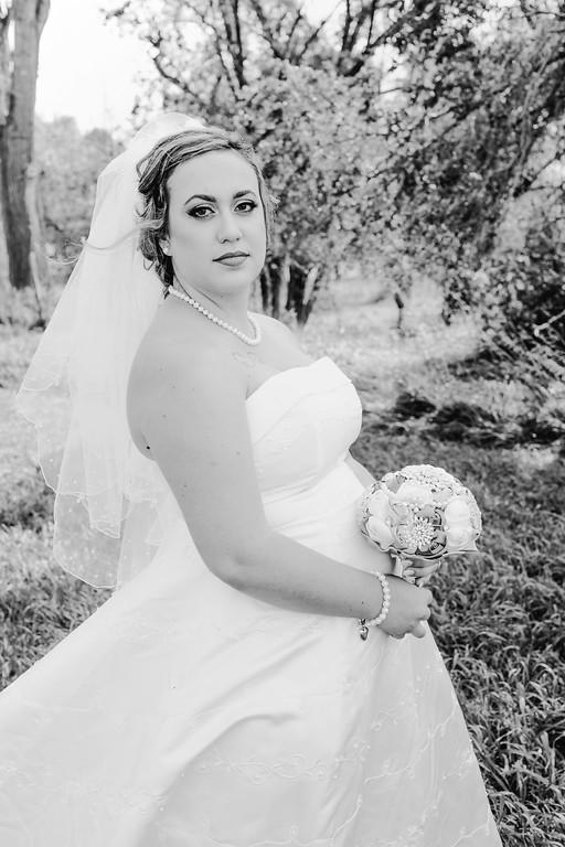 01162--©ADHPhotography2017--ClintBeguinShelbyCook--Wedding