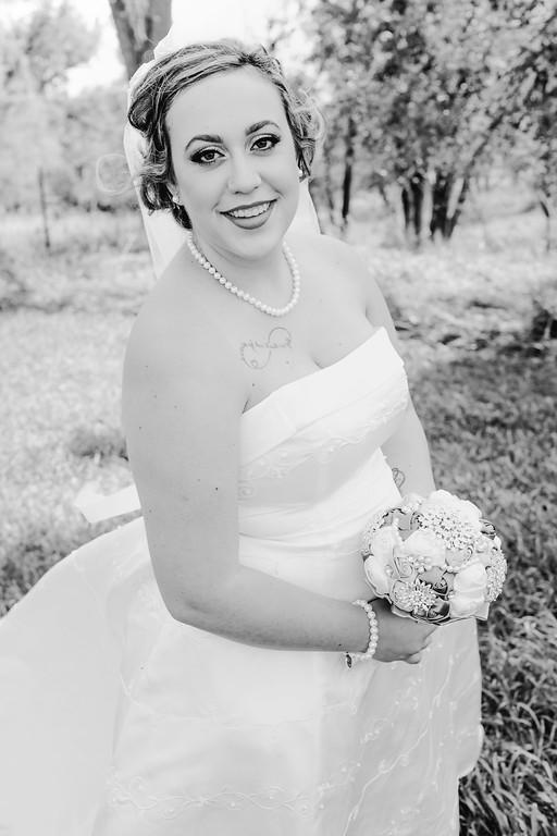 01176--©ADHPhotography2017--ClintBeguinShelbyCook--Wedding