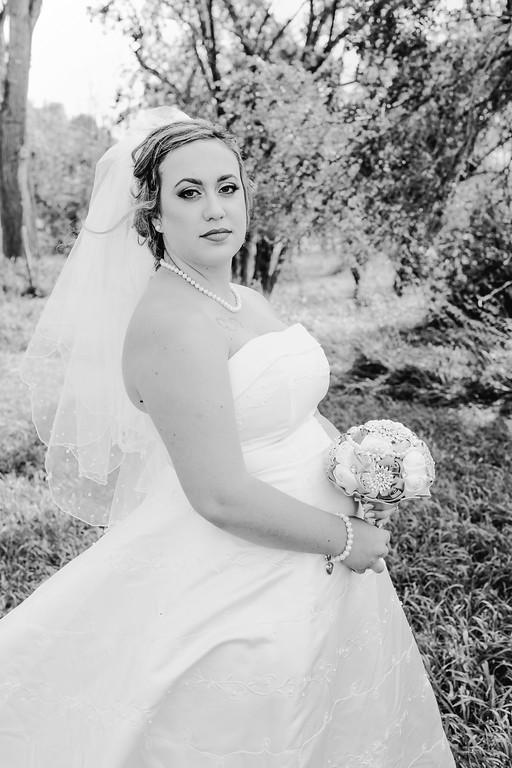 01158--©ADHPhotography2017--ClintBeguinShelbyCook--Wedding