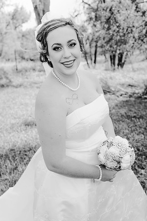 01172--©ADHPhotography2017--ClintBeguinShelbyCook--Wedding