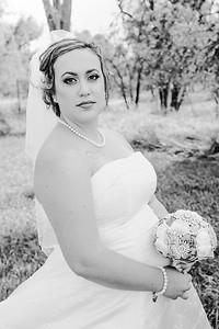 01164--©ADHPhotography2017--ClintBeguinShelbyCook--Wedding