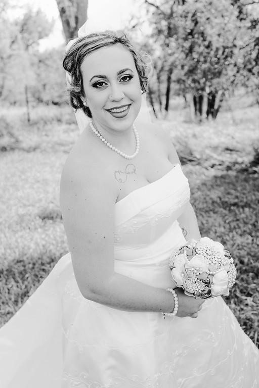 01170--©ADHPhotography2017--ClintBeguinShelbyCook--Wedding