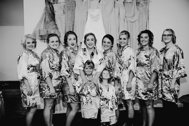 00190--©ADHPhotography2017--ClintBeguinShelbyCook--Wedding