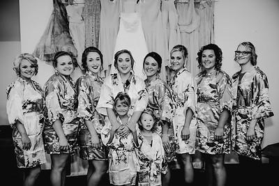 00198--©ADHPhotography2017--ClintBeguinShelbyCook--Wedding