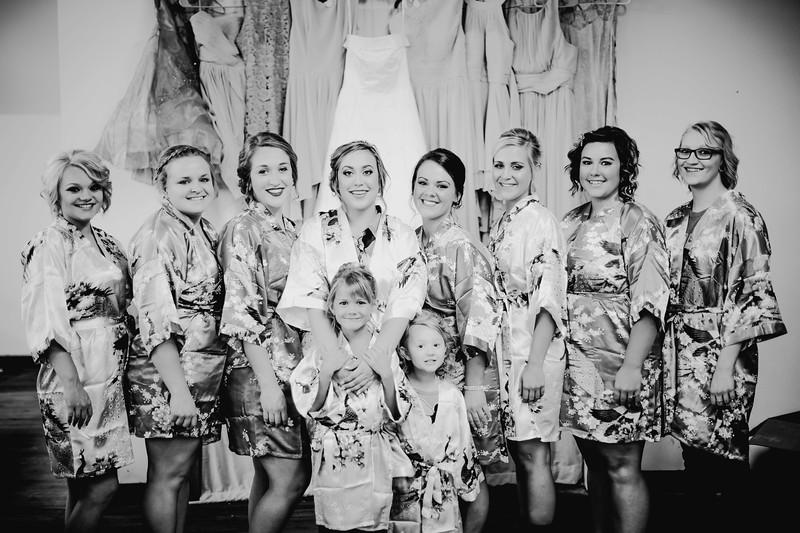 00196--©ADHPhotography2017--ClintBeguinShelbyCook--Wedding