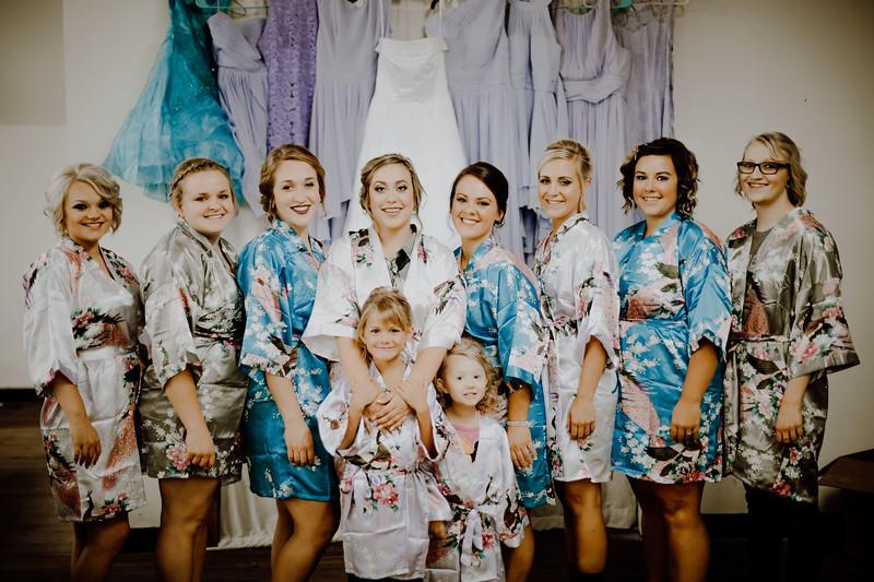 00195--©ADHPhotography2017--ClintBeguinShelbyCook--Wedding