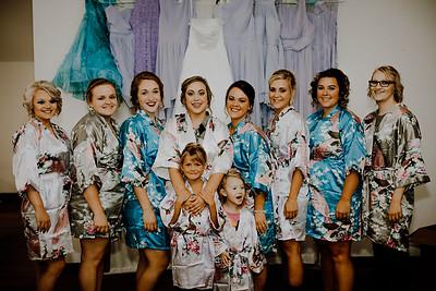 00193--©ADHPhotography2017--ClintBeguinShelbyCook--Wedding